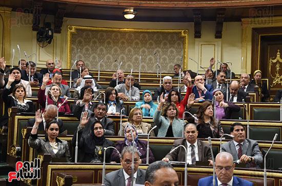 مجلس النواب (12)