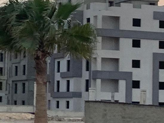 قبة الفرع الدولى لجامعة القاهرة (8)