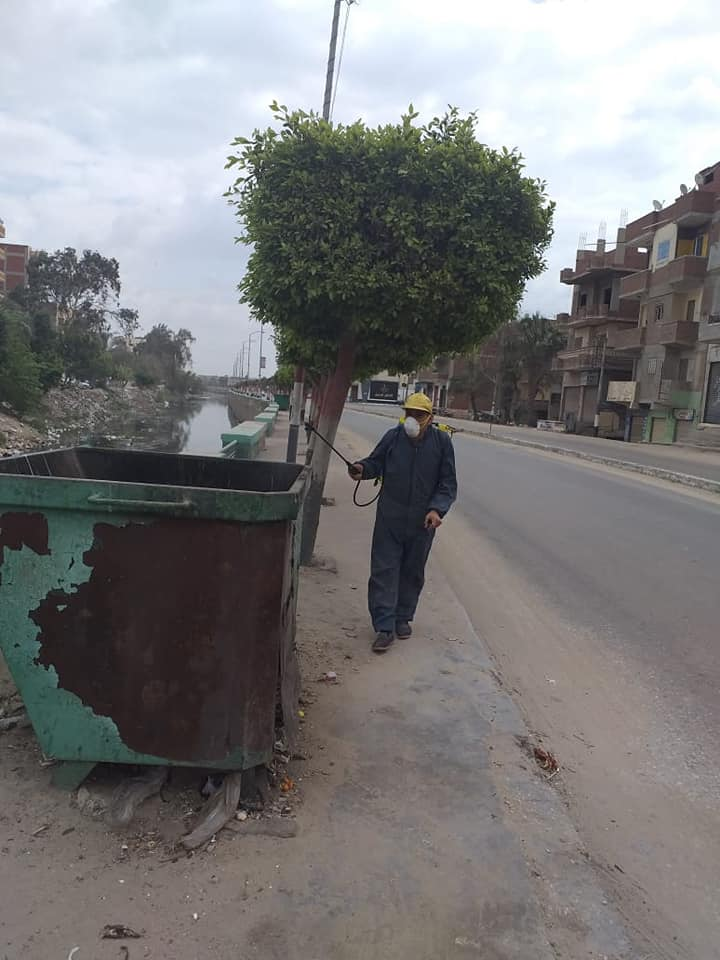 حملة مكبرة لتطهير وتعقيم شوارع مدينة أبو حماد بالشرقية (1)