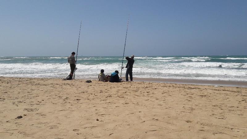 شواطئ الاسكندرية (12)