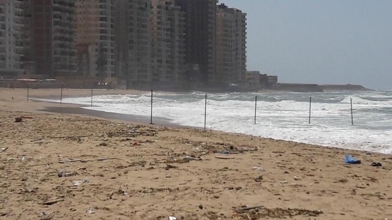 شواطئ الاسكندرية (10)