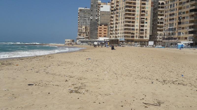 شواطئ الاسكندرية (7)
