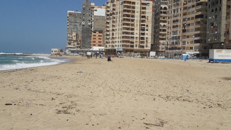 شواطئ الاسكندرية (6)