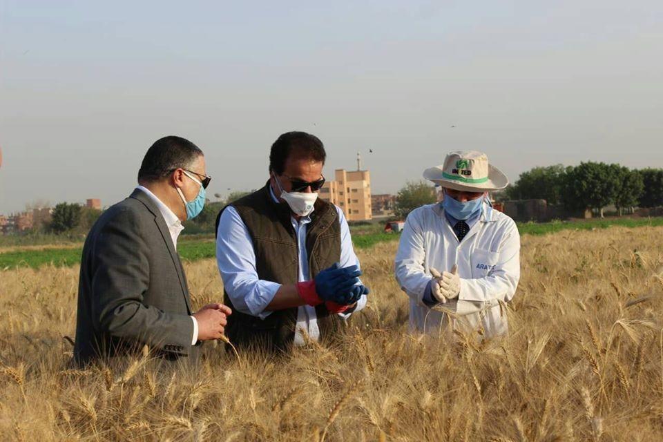 وزير التعليم العالى ورئيس جامعة بنها يتفقدان المزارع الإنتاجية بمشتهر (5)