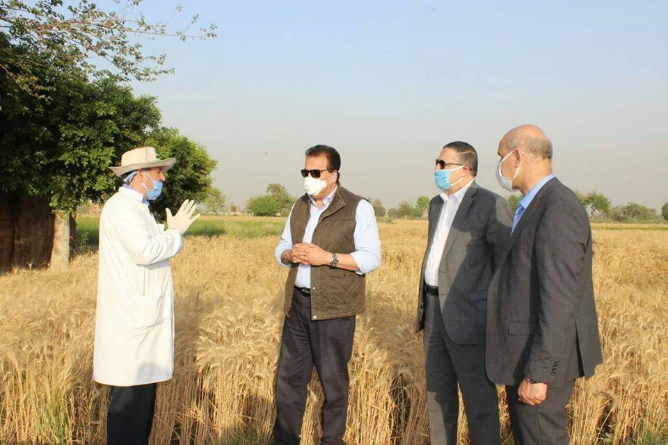 وزير التعليم العالى ورئيس جامعة بنها يتفقدان المزارع الإنتاجية بمشتهر (2)