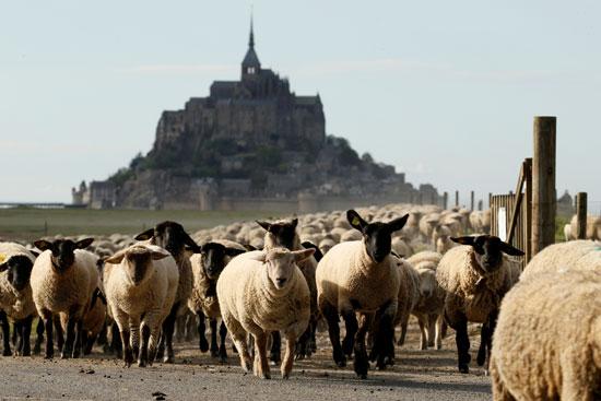 جبل القديس ميشيل هو ثالث أهم المناطق السياحية فى فرنسا