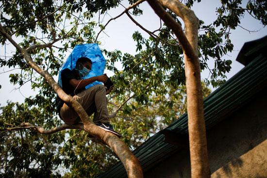 أحد طلاب السلفادور فوق شجرة للحصول على إشارة للإنترنت