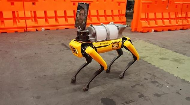 روبوت على هيئة كلب يعمل فى إحدى مستشفيات بوسطن (1)