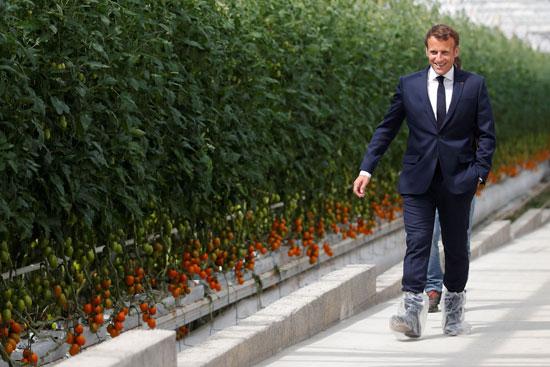 الرئيس الفرنسى يتفقد إحدى المزارع