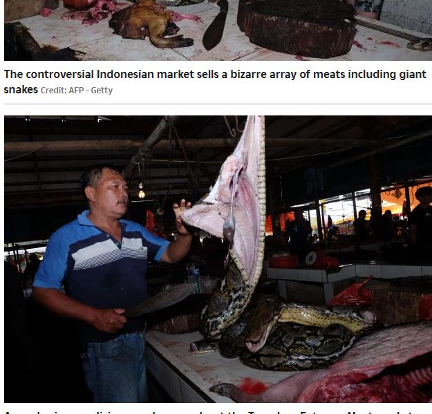 احد البائعين يقوم بتشفية لحم الثعابين