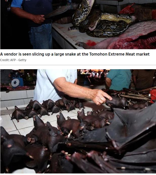 الخفافيش تملا الاسواق