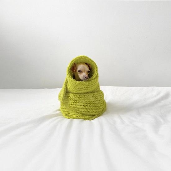Boobie Billie ووشاح أخضر