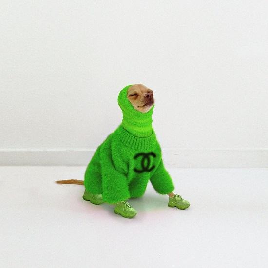 Boobie Billie بإطلالة خضراء من شانيل
