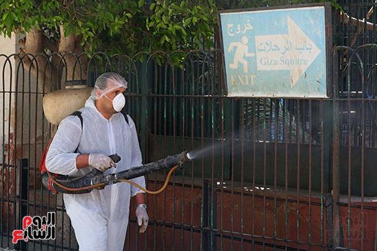 اعمال  تطهير  بحديقة حيوان الجيزة  ضد كورونا  (4)