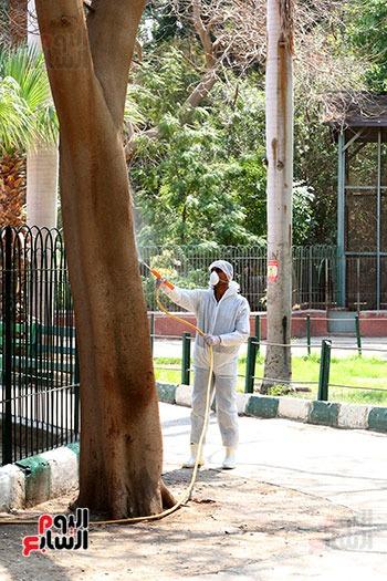 اعمال  تطهير  بحديقة حيوان الجيزة  ضد كورونا  (3)