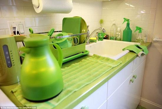 السيدة الخضراء (2)