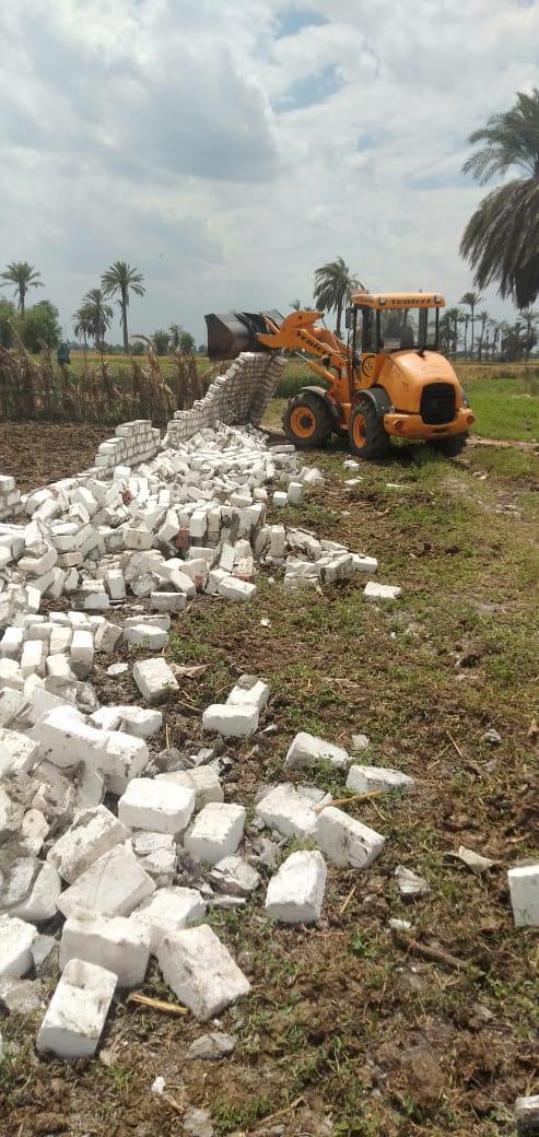 إزالة تعديات على الأراضى ببنى سويف (6)