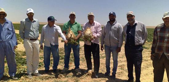 520201316276881-الدكتور-محمد-سليمان-رئيس-مركز-البحوث-الزراعية-بمشروع-غرب-المنيا