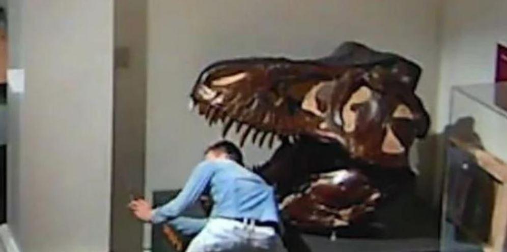 شخص يتسلل إلى متحف في أستراليا (2)
