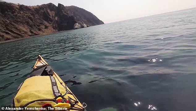 الحيتان تحول حول شابين من راكبى الزوراق  (2)