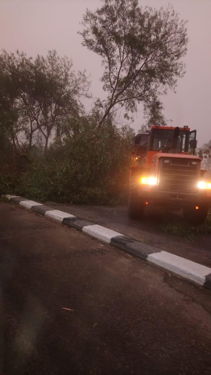رفع الأشجار والنخيل المتساقط بالطرق وفصل التيار الكهربائي بالمناطق المتضررة