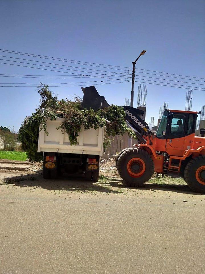 رفع آثار الطقس بعد سقوط 20 شجرة وأفرع أشجار على الطرق المختلفة
