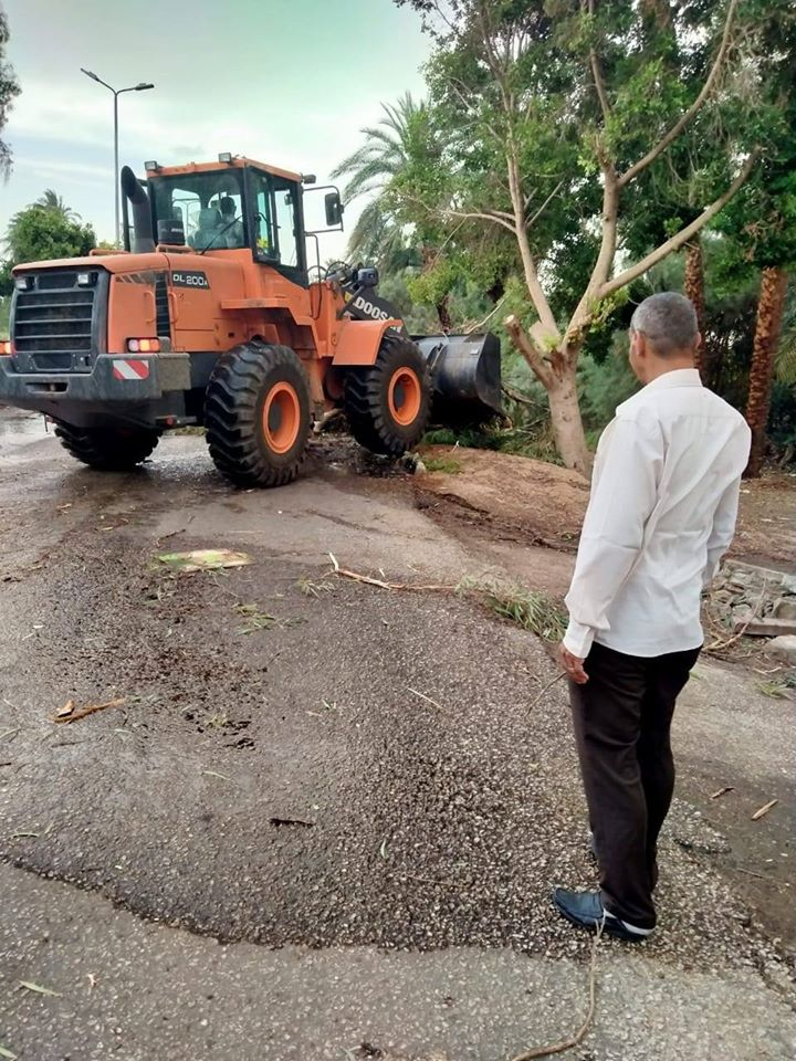 مدينة البياضية ترفع آثار الطقس بعد سقوط 20 شجرة وأفرع أشجار