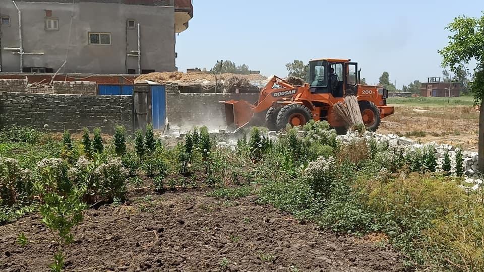 إزالة التعديات على الأراضى الزراعية (8)