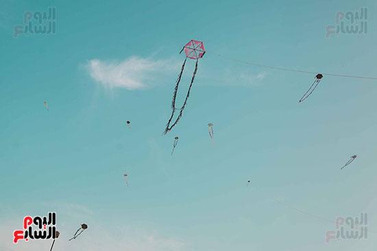 الطائرات الورقية  (10)