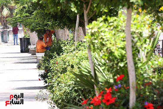 عمال النظافة فى ظل الاشجار