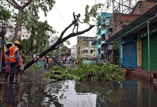 رجل يقطع فروع شجرة اقتلع بعد أن وصل إعصار أمفان إلى اليابسة