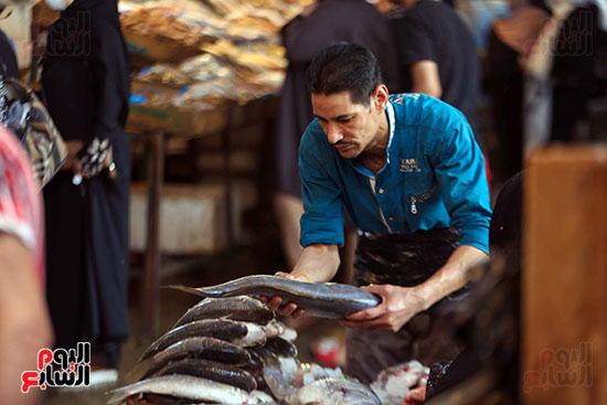 حلقة السمك  (7)