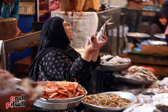 اسواق السمك (2)