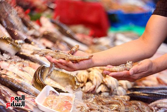 انواع السمك (6)