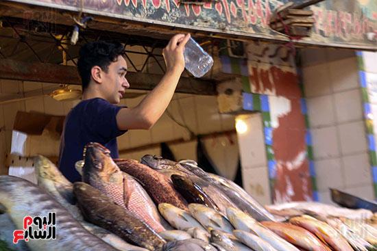 سوق السمك (4)