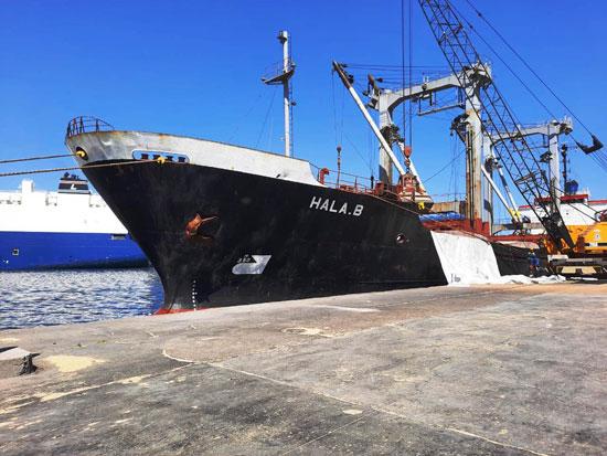 رئيس ميناء الإسكندرية يوجه بالالتزام بالوقاية الشخصية للعاملين (5)