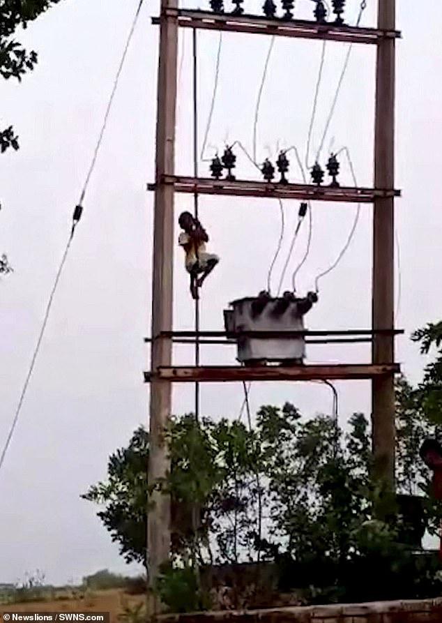 الصبى يتسلق عمود الكهرباء (2)