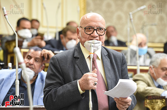 جلسة مجلس النواب (24)