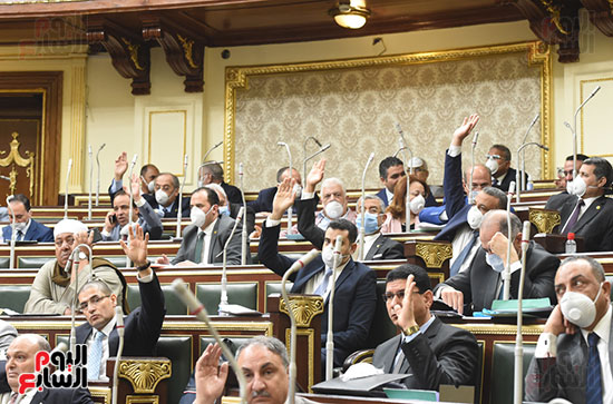 جلسة مجلس النواب (23)