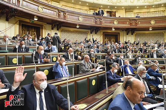 جلسة مجلس النواب (11)