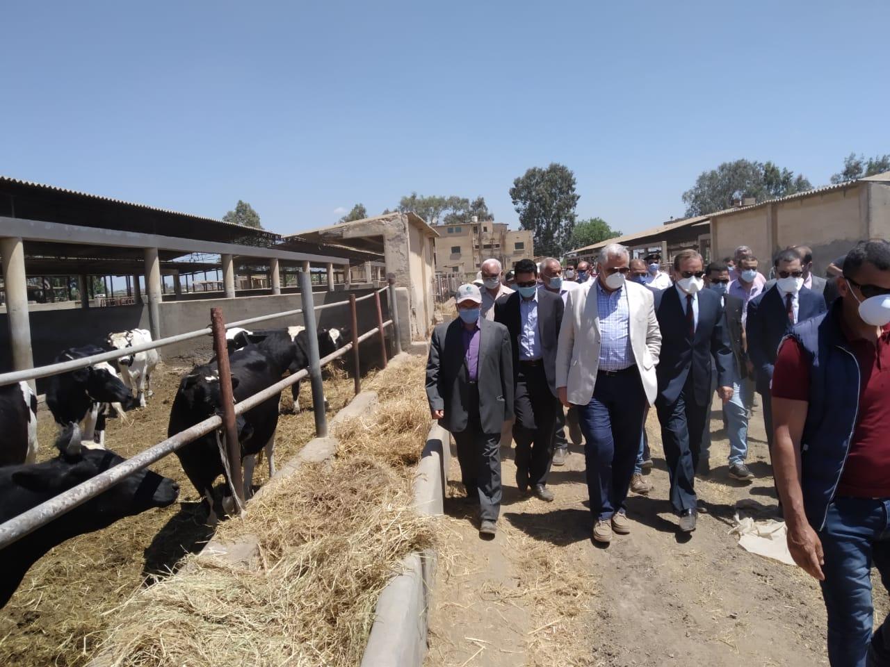 وزير  الزراعة  اثناء جولة    بمشروعات زراعية بكفر الشيخ  (1)