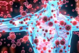 كيف يغزو فيروس كورونا جسمك