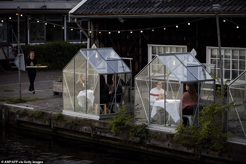 مطعم هولندى يصمم غرفا زجاجية لمنع تفشى كورونا (1)