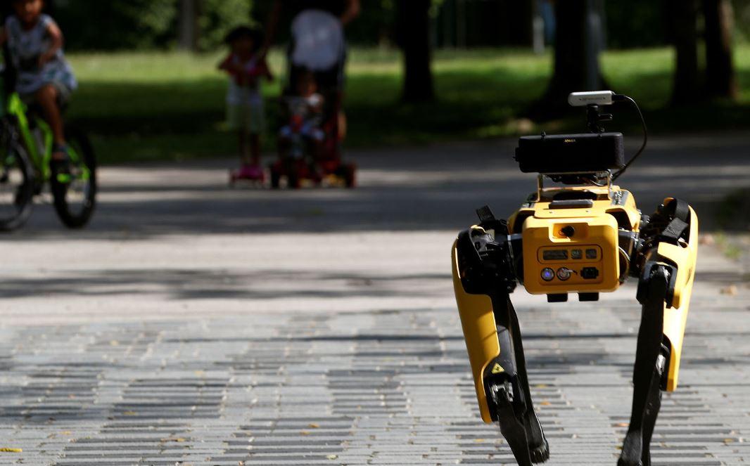 الكلب الروبوتى فى  سنغافورة  (2)