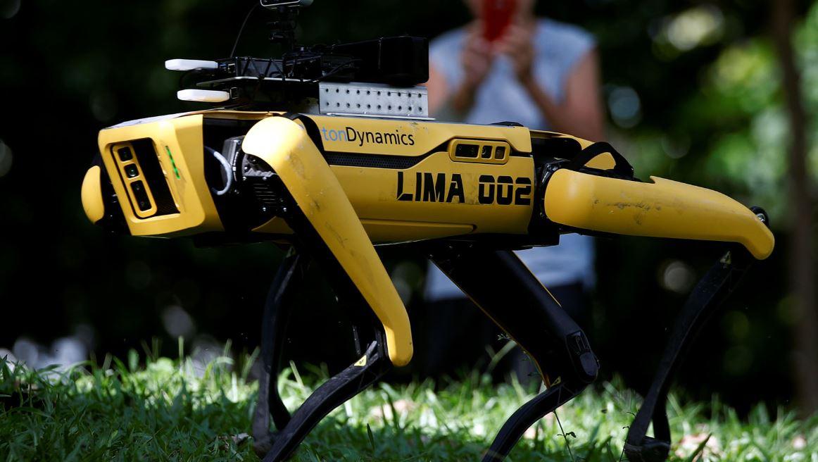 الكلب الروبوتى فى  سنغافورة  (3)