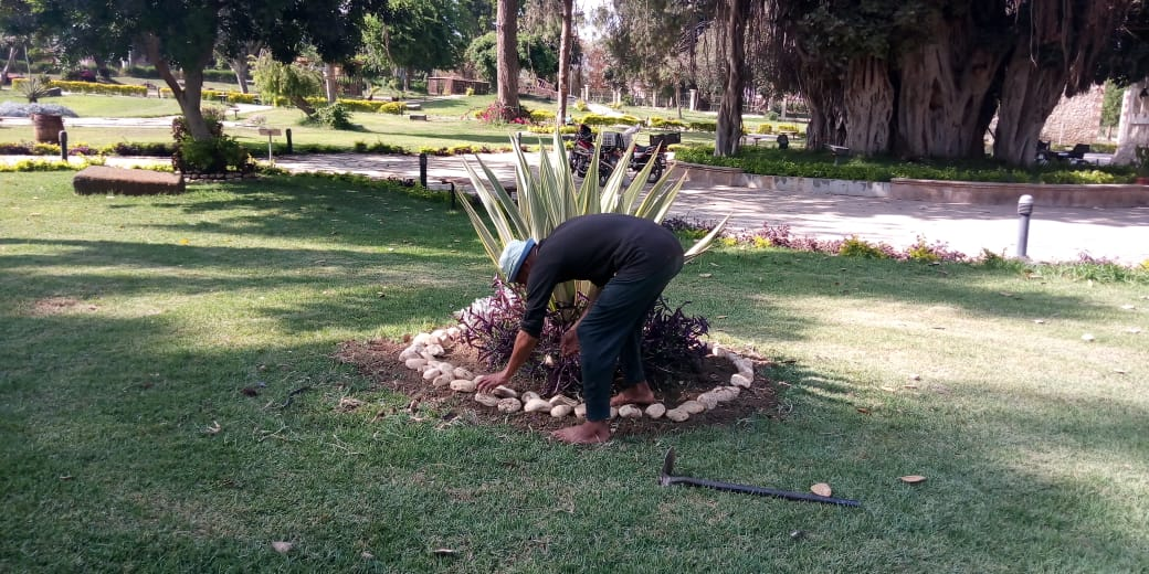 تطوير الحدائق