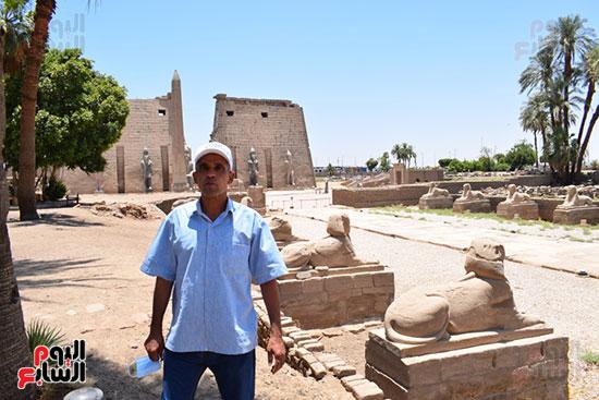 اليوم السابع فى قلب طريق الكباش المشروع الآثرى (13)