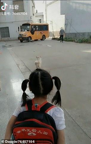 الكلبة مع صديقتها (2)