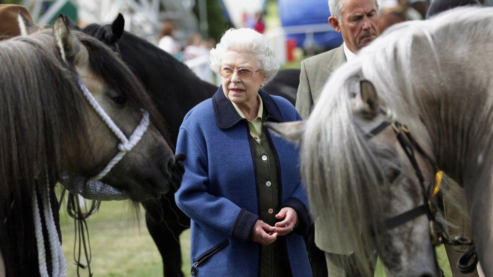 نشاط الملكة إليزابيث في العزل