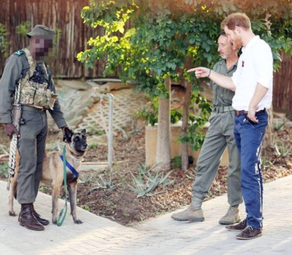 الأمير هاري مع الكلب كيلر